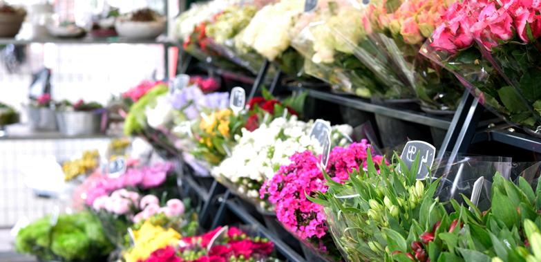 旬の花をお求めやすい価格で