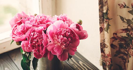 香り豊かな花々