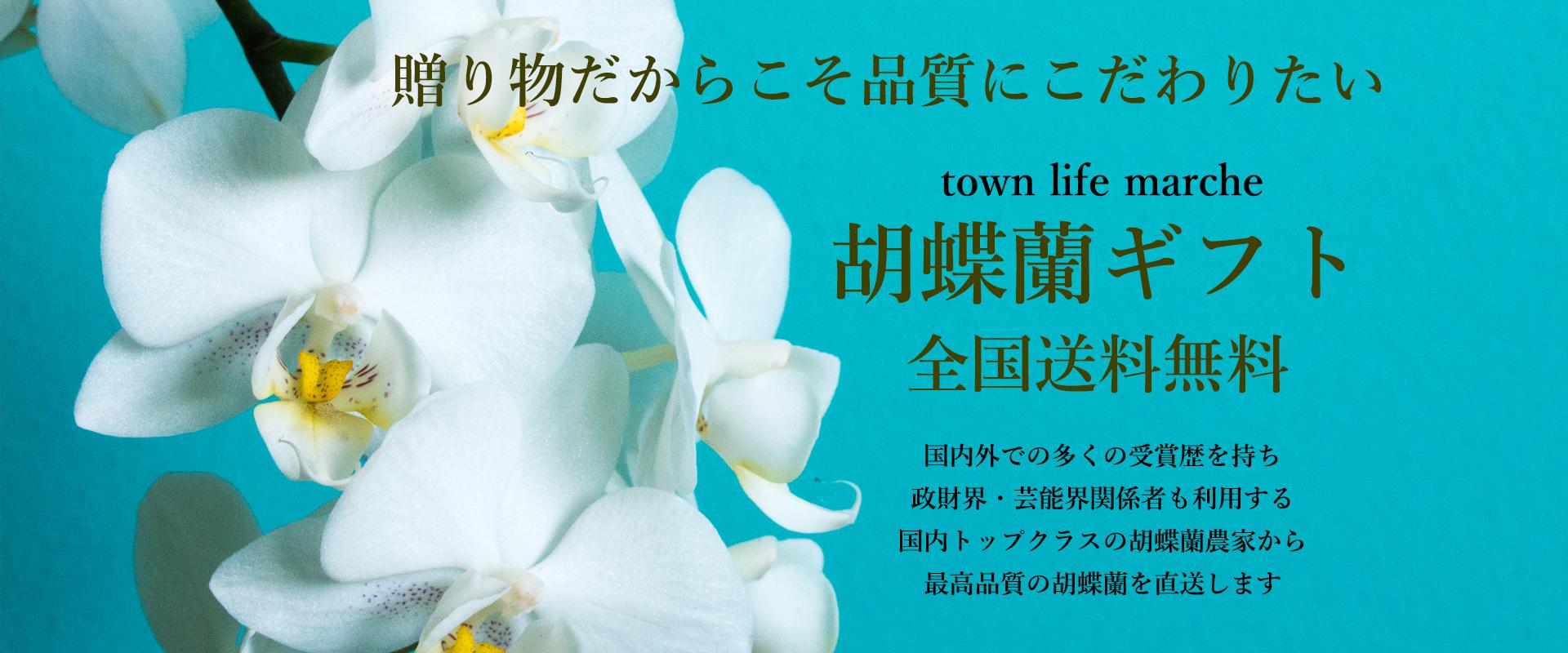 贈り物だからこそ品質にこだわりたい town life marcheの胡蝶蘭ギフト 送料無料